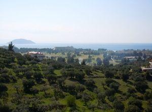 Sale, Apartment complex, Neos Marmaras (Sithonia)