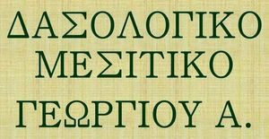 ΔΑΣΟΛΟΓΙΚΟ ΜΕΣΙΤΙΚΟ ΓΕΩΡΓΙΟΥ Α.
