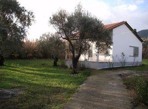 Μονοκατοικία για ενοικίαση Λέσβος - Μυτιλήνη Πλιγόνι 60 τ.μ. Ισόγειο