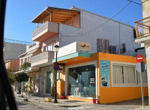 Κατάστημα προς πώληση Περιοχη χώρας 120 τ.μ. Ισόγειο