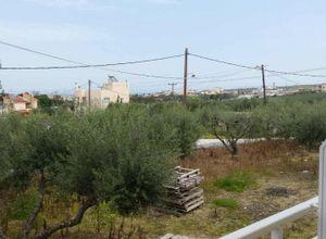Rent, Apartment, Heraclion Cretes (Heraklion Prefecture)