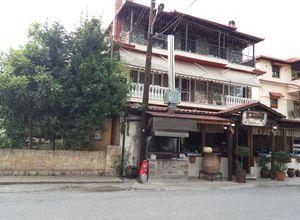Ξενοδοχείο προς πώληση Αριδαία Όρμα 750 τ.μ. Ισόγειο