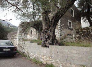 Κτίριο επαγγελματικών χώρων προς πώληση Κέρκυρα Κασσιόπη 140 τ.μ. Ισόγειο