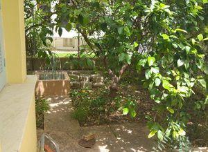 Μονοκατοικία για ενοικίαση Πάτρα Αρόη 80 τ.μ. Ισόγειο