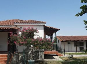 Detached House for sale Trikala 60 m<sup>2</sup> Ground floor