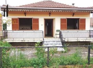 Μονοκατοικία προς πώληση Ασκός (Σοχός) 65 τ.μ. 1 Υπνοδωμάτιο