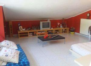 Detached House, Marousi