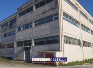 Κτίριο επαγγελματικών χώρων προς πώληση Καβάλα Περιγιάλι 5.920 τ.μ. Ισόγειο