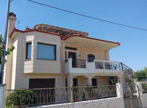 Μονοκατοικία προς πώληση Κρόκος (Ελίμεια) 330 τ.μ. 3 Υπνοδωμάτια