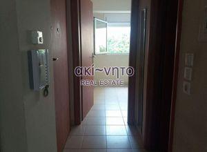 Rent, Studio Flat, Triandria (Thessaloniki)