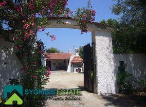 Μονοκατοικία προς πώληση Πευκί (Αρτεμίσιο) 280 τ.μ. 6 Υπνοδωμάτια