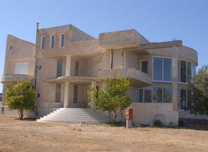 Μονοκατοικία προς πώληση Ρόδος Χώρα 1.200 τ.μ. Ισόγειο