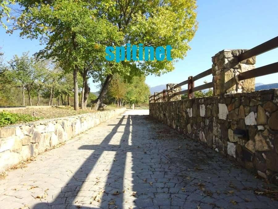 Photo 120461182