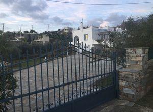 Μονοκατοικία προς πώληση Μπούρος (Κάρυστος) 200 τ.μ. 4 Υπνοδωμάτια