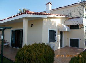 Μονοκατοικία προς πώληση Πάλαιρος (Κεκροπία (Παλαίρου)) 210 τ.μ. 6 Υπνοδωμάτια