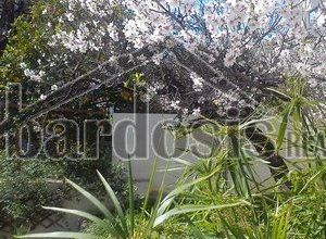 Detached House to rent Galaxidi 110 ㎡ 2 Bedrooms