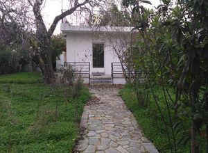 Μονοκατοικία προς πώληση Μπάλανα (Γέρακας) 56 τ.μ. 1 Υπνοδωμάτιο