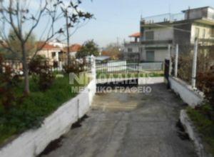 Μονοκατοικία προς πώληση Νέο Πετρίτσι (Πετρίτσι) 100 τ.μ. Ισόγειο 2 Υπνοδωμάτια 2η φωτογραφία