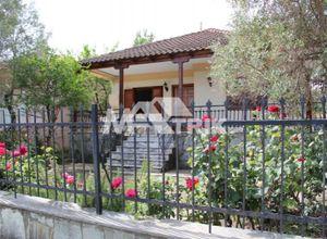 Μονοκατοικία προς πώληση Κέντρο (Απολλώνια) 105 τ.μ. 3 Υπνοδωμάτια