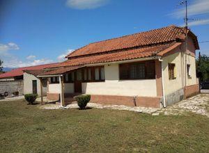 Μονοκατοικία προς πώληση Κέντρο (Μεγάλα Καλύβια) 100 τ.μ. 2 Υπνοδωμάτια