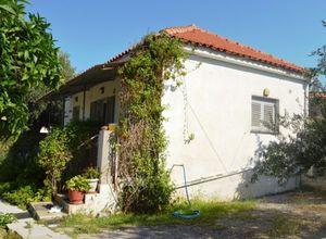 Μονοκατοικία προς πώληση Κέντρο (Καλαμάτα) 69 τ.μ. Ισόγειο