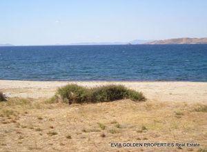 Sale, Land Plot, Aetos (Karistos)