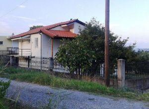 Μονοκατοικία προς πώληση Άγιος Κωνσταντίνος 72 τ.μ.