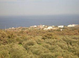 Μονοκατοικία προς πώληση Ρέθυμνο 280 τ.μ. Ισόγειο