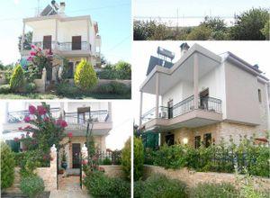 Detached House, Nikiti