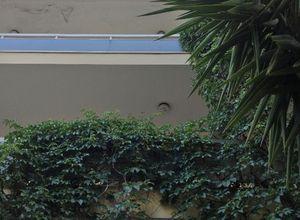 Γραφείο για ενοικίαση Αργυρούπολη Κέντρο 690 τ.μ. Ισόγειο