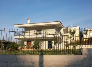 Μονοκατοικία προς πώληση Δήλεσι (Οινόφυτα) 148 τ.μ. 3 Υπνοδωμάτια Νεόδμητο