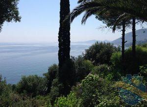 Μονοκατοικία προς πώληση Κέρκυρα Αχίλλειο 200 τ.μ. Ισόγειο