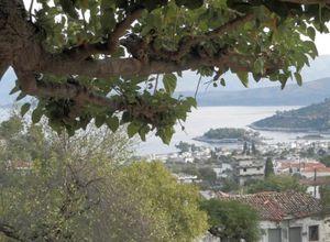Sale, Detached House, Methana (Argosaronikos islands)