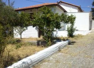 Detached House for sale Samos Karlovasi 97 m<sup>2</sup> Ground floor