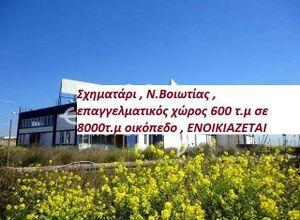 Βιομηχανικός χώρος προς πώληση Σχηματάρι 600 τ.μ. Ισόγειο