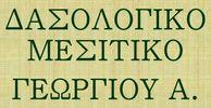 GEORGIOU ANTONIS