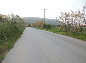 Land Plot, Krini
