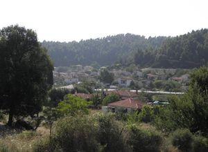 Μονοκατοικία, Κασσάνδρα