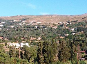 Sale, Parcel, Chora (Andros)