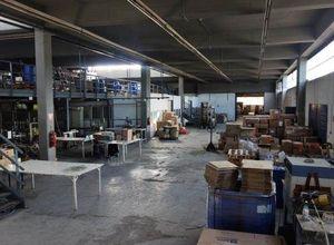 Βιομηχανικός χώρος προς πώληση Οινόφυτα 3.650 τ.μ.
