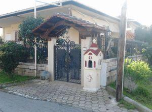 Μονοκατοικία προς πώληση Μετόχι Προδρόμου (Βεργίνα) 135 τ.μ. 2 Υπνοδωμάτια