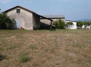 Μονοκατοικία προς πώληση Κομοτηνή 1.387 τ.μ. Ισόγειο