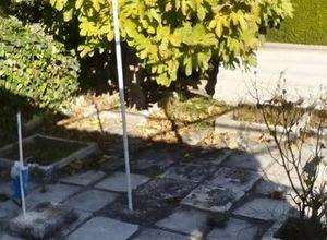 Μονοκατοικία προς πώληση Μαρκόπουλο 45 τ.μ. Ισόγειο